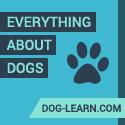 Dog Learn